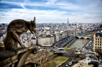 Notre Dame - Gargoyle overlooking the city