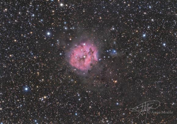Enterprise Photography: Nebulas &emdash; Cocoon Nebula